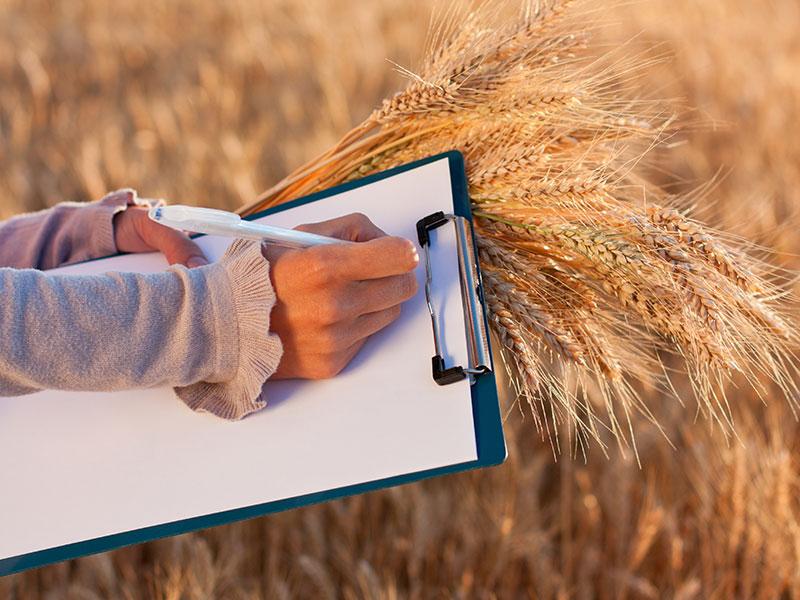 Hum'S agronomie pour les hommes et sols